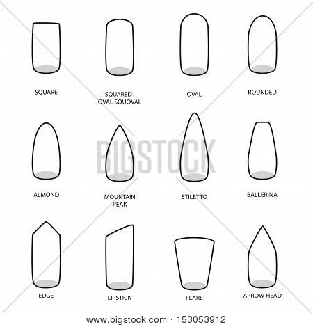 Set of different shapes of nails on white. Nail shape icons. Manicure polish. Vector illustration
