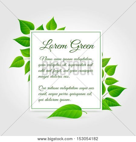 Fresh green leaf vector border. Vector spring leaves frame background