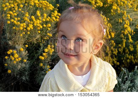 little girl with blue eyes and blond hair portrait in yellow evening sunlight toddler