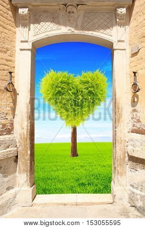 Frame with ancient door and heart shape tree on green field