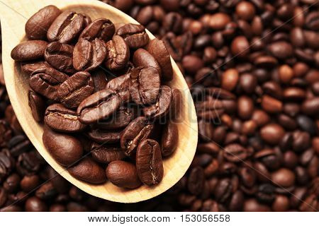 Wooden spoon with coffee beans, close up view
