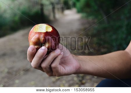 closeup of a young caucasian man eating a red apple outdoors, in a lush public park or a forest