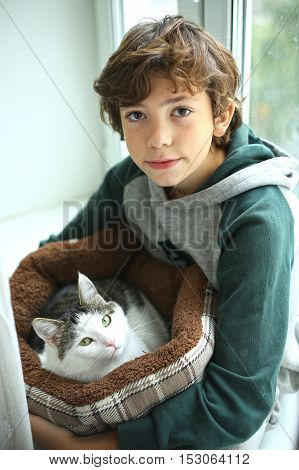 preteen handsome boy with cat in cat bed close up photo