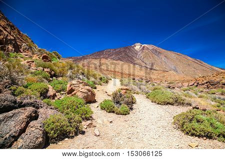 Walking Trail At The Mount Teide National Park