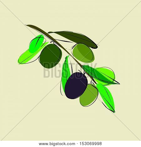 branch with leaves and olives on beige background