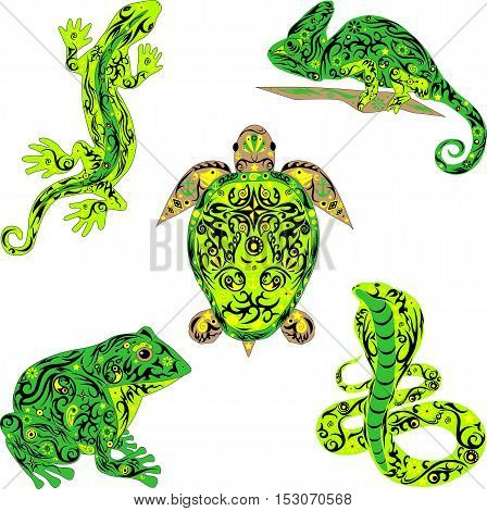 The set with reptiles, is a lot of vector animals, an animal with a pattern on a body, the lizard creeps, a large frog, a venomous snake, a chameleon on a branch