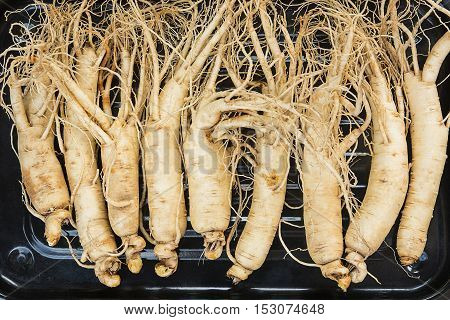 Top view of dry ginseng roots on metal plate.