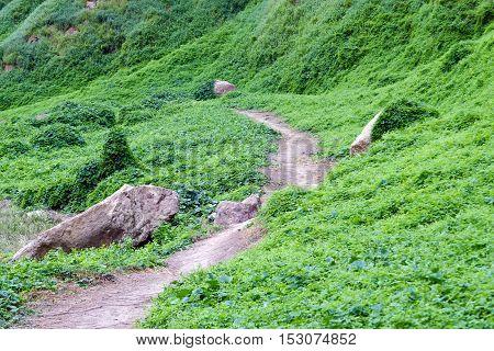 Mountain Path In The National Park Near Khun Dan Dam, Nakohn Nayok Thailand