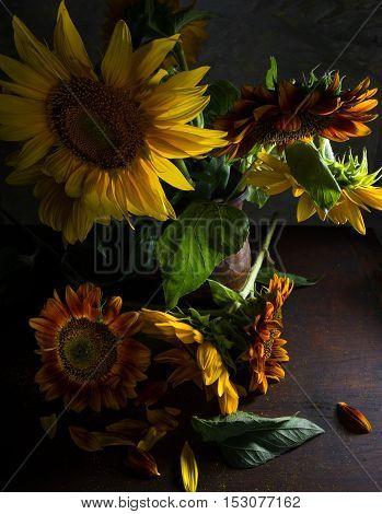 Beautiful Sunflowers In Vase