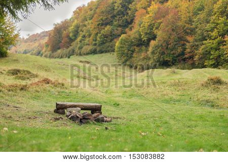 A large meadow with trees on both sides. Bench made of logs near a fireplace. Autumn landscape.