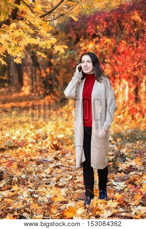Young smiling woman walk in the colorful autumn park and talking on cell phone. Joyful woman is talking on a smart phone outdoors in a bright leaves in fall. Girl in autumn park talking on mobile phone