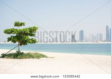 white beach of the Persian Gulf, view of skyscrapers, Dubai