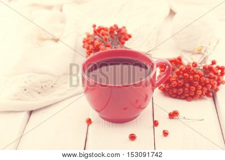 Red Cup Of A Therapeutic Herbal Tea With Rowan Berry On White Rustic Wooden Table. Alternative Medic