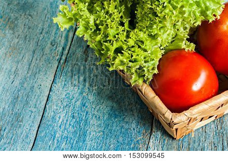 Fresh Green Salad Lola Rossa And Tomatoes On Blue Wooden Background