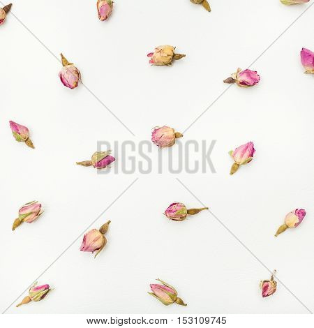 Dried Pink Rose Flower Buds Close Up On White