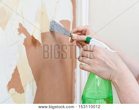 Cleaning Wall From Paper With Chemical Stripper