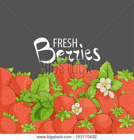 strawberry flowers and berries on a black background