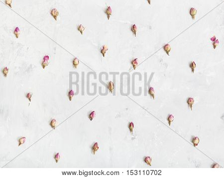 Pink Rose Flower Buds On Gray Concrete Plate