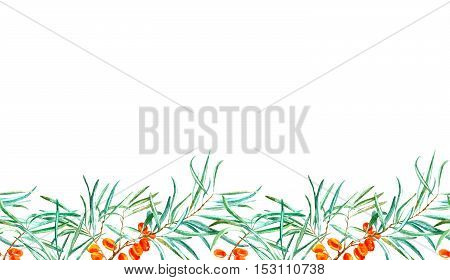 seamless border with sea buckthorn and branches.watercolor hand drawn illustration.white background.