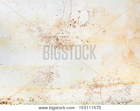 construction background - indoor shabby wall with mold spots