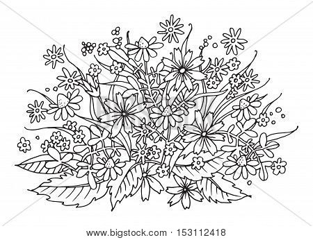 Hand drawn flowers on white background vector illustration