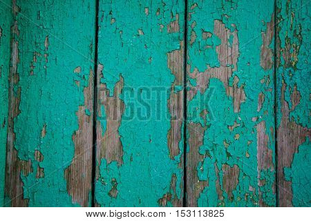 wall of Green wooden texture as background