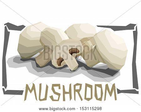 Vector simple illustration of Champignon mushrooms in angular cartoon style.