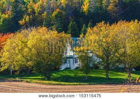 Farmhouse surrounded by trees with fall foliage.