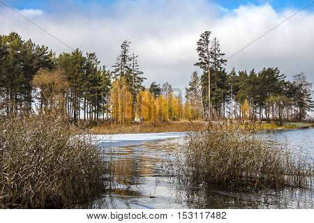 The First Winter Frosts In Siberia. The Ob River