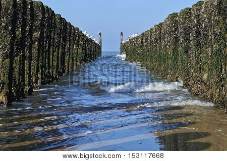 Between The Two Rows Of Poles Of The Breakwater