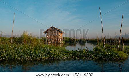 Floating garden on Inle lake Shan state Myanmar