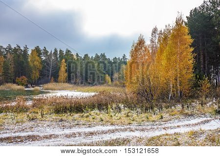 The Beginning Of The Russian Winter. Siberia, The Coast Of The Ob River
