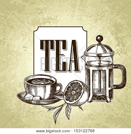 Vector card design with hand drawn tea illustration. Decorative inking background with vintage tea sketch. Sketched template