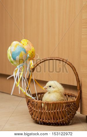 Small, yellow chicken in a straw basket decorated with painted Easter eggs with colorful ribbons