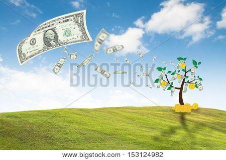 money dollar bills tree concept growth business finance