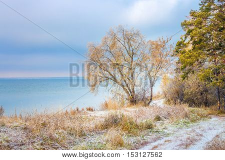 Autumn Landscape With First Snow In The Siberian River Ob