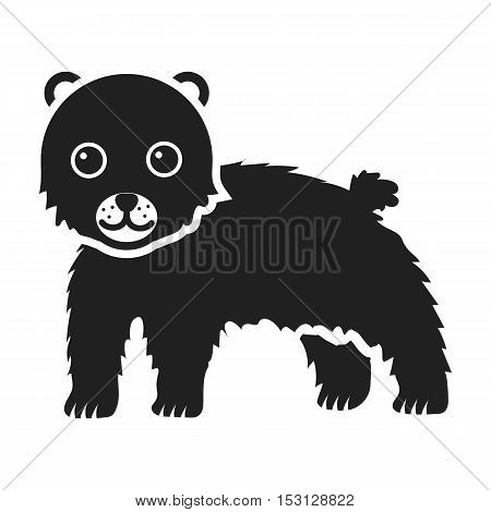 Bear icon in black style isolated on white background. Animals symbol vector illustration.