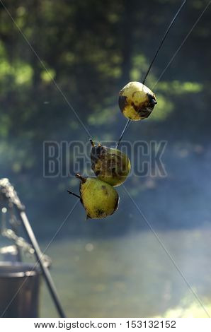 Three sweet pears baked on a campfire. Selective focus