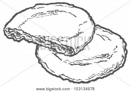 line illustration oat cookies with nuts. isolated on white background