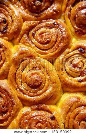 Pumpkin cinnamon dough bun rolls traditional Danish baked vegan sweet autumn cake holiday dessert swirl bread food close up texture