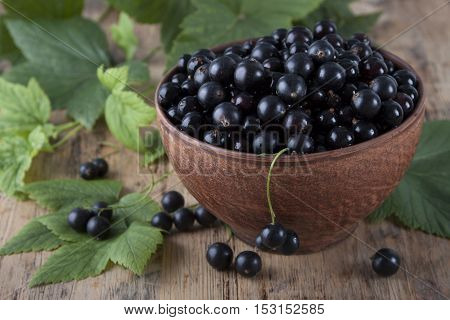 Black currants in a ceramic bowl on the old wooden table