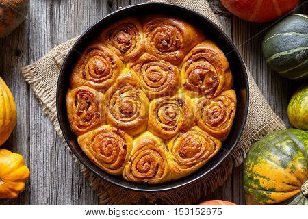 Cinnamon pumpkin dough bun rolls spicy traditional Danish baked vegan sweet autumn cake holiday dessert swirl bread pastry food with raw pumpkins on vintage wooden table background.