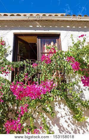 Old building with bougainvilla flowers