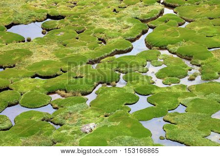 Water holes in the fields of the peruvian andes, the water is nicely forming bends and holes