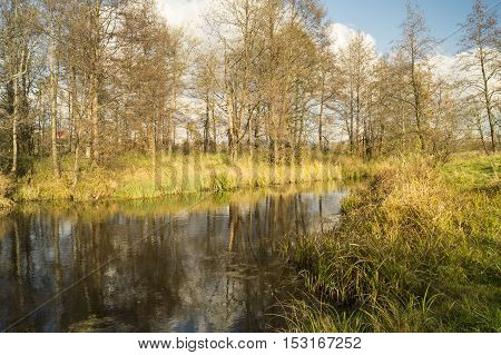 Autumn landscape with small river on background blue sky