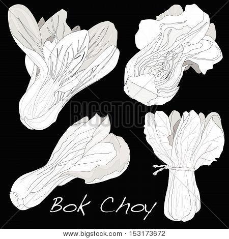Bokchoy6