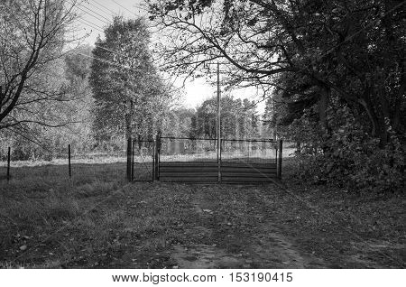 Gate with a gate in a fence on autumn tree background. Black and white photography