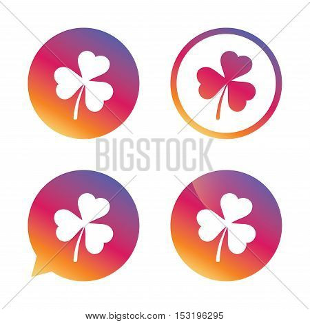 Clover with three leaves sign icon. Trifoliate clover. Saint Patrick trefoil symbol. Gradient buttons with flat icon. Speech bubble sign. Vector