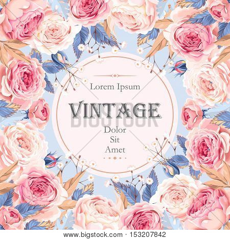 Vector vintage card with english roses and gypsophila