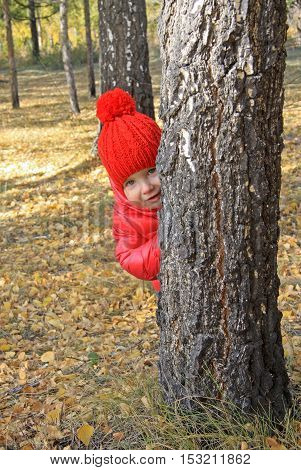 Pretty Baby Girl In Red Cap And Jacket Peeking Out From Behind A Tree In Autumn Park